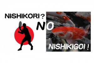 NISHIKORI? NO,NISHIKIGOI!