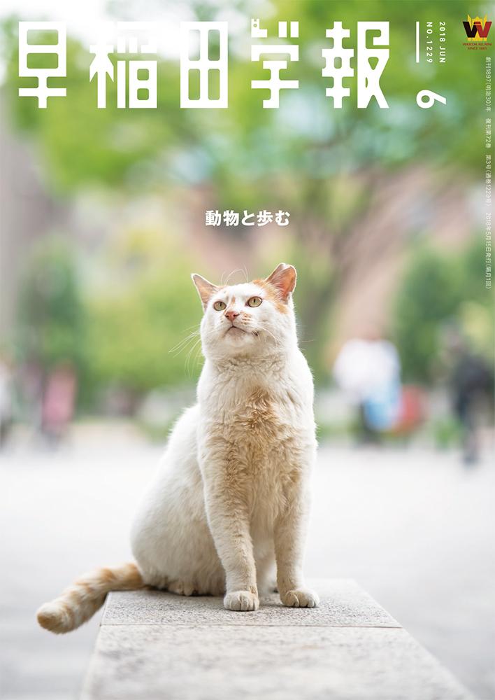 早稲田学報2018年6月号